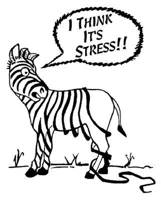 stressed zebra cartoon